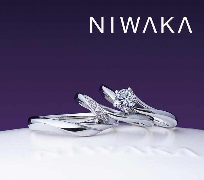 NIWAKA | ニワカ